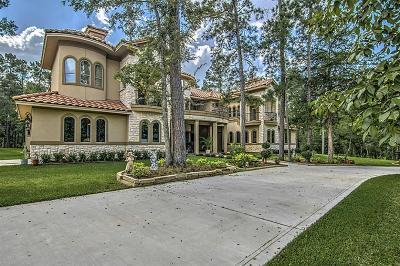 Conroe Single Family Home For Sale: 6165 Slick Rock Drive