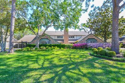 Sugar Land Single Family Home For Sale: 619 Sugar Creek Boulevard