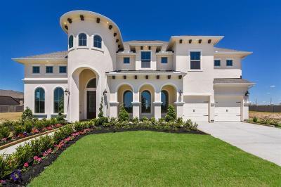 Manvel Single Family Home For Sale: 2427 Ponderosa Ridge Drive