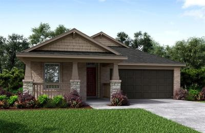 Tomball Single Family Home For Sale: 19418 Tobiano Park Drive