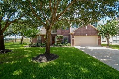 Houston Single Family Home For Sale: 16330 S S Southern Stone Drive