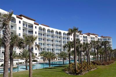 Galveston Mid/High-Rise For Sale: 10327 Termini San Luis Pass Road #403