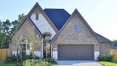 Montgomery Single Family Home For Sale: 164 Del Carmen Drive