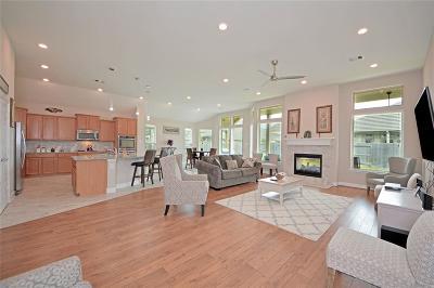 Houston Single Family Home For Sale: 15427 Dolan Brook Lane