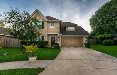 Alvin Single Family Home For Sale: 229 Midtown Park Drive