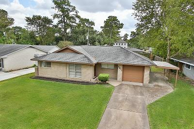 Houston Single Family Home For Sale: 2411 Bron Holly Drive