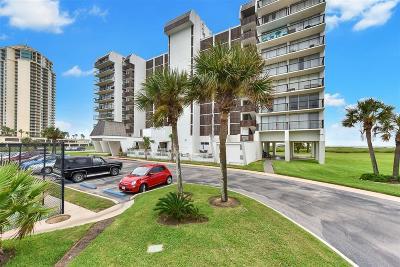 Galveston Rental For Rent: 415 E Beach Drive #514