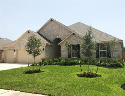 Tomball Single Family Home For Sale: 12603 Fort Isabella Drive