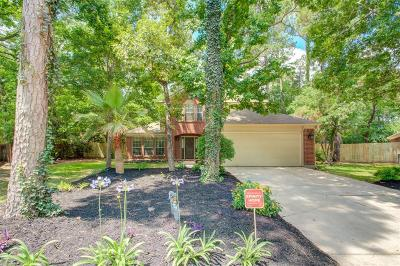 Spring Single Family Home For Sale: 114 Snowdance Court