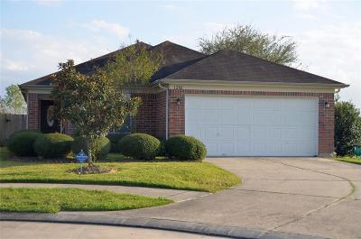Houston Single Family Home For Sale: 1202 Sabine Brook Way