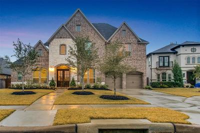 Katy Single Family Home For Sale: 2010 Terrace Green Court