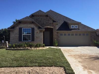 Willis Single Family Home For Sale: 5405 Zephyr Lane