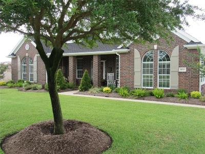 Baytown Single Family Home For Sale: 8810 Tumblewood Drive