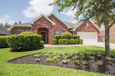 Tomball Single Family Home For Sale: 18623 Tupper Creek Court