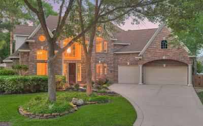 The Woodlands Single Family Home For Sale: 42 Juniper Grove Place