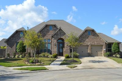 Friendswood Single Family Home For Sale: 2210 Indigo Pass Court