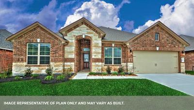Rosenberg Single Family Home For Sale: 502 Yellow Bullhead Court