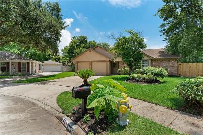 Sugar Land Single Family Home For Sale: 14107 Louan Court