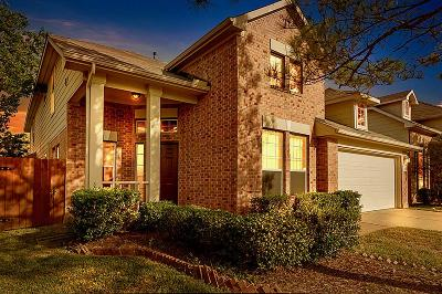 Houston Single Family Home For Sale: 6130 Rusting Willow Lane