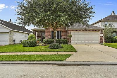 Tomball Single Family Home For Sale: 19811 Hollington Drive