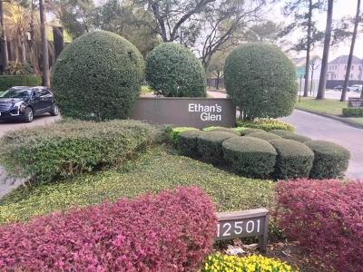 Houston Condo/Townhouse For Sale: 211 E Litchfield Lane