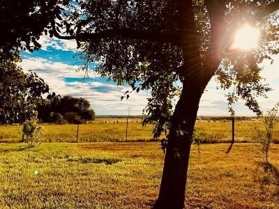 Washington County Farm & Ranch For Sale: 5591 Nicholson Lake Road