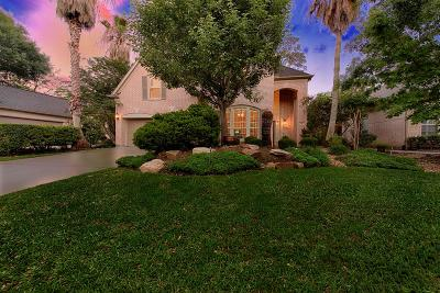 The Woodlands Single Family Home For Sale: 18 S Manorcliff Place