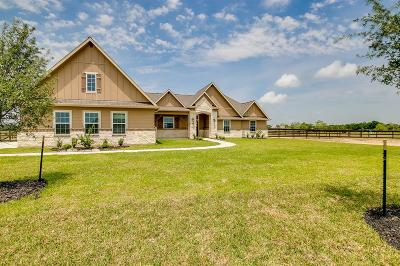 Alvin Single Family Home For Sale: 6910 Bayou Trail