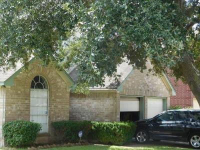 Houston Single Family Home For Sale: 4254 N Geronimo Lake Drive