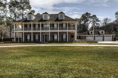 Spring Single Family Home For Sale: 1002 Spring Meadow Drive