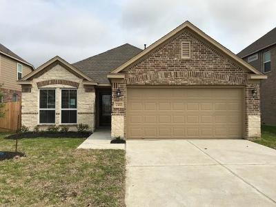 Harris County Single Family Home For Sale: 2302 Sanders Brook Drive