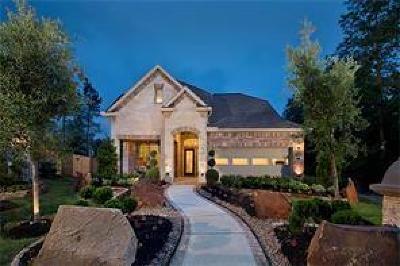 Single Family Home For Sale: 27236 Cyrus Ridge Lane