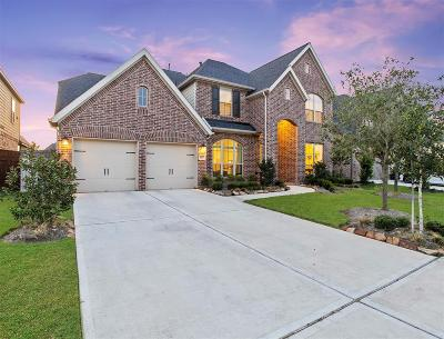 Fort Bend County Single Family Home For Sale: 3815 Desert Springs Lane