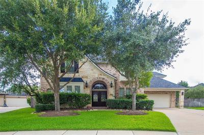Sugar Land Single Family Home For Sale: 13303 Sun Canyon Court