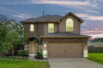 Willis Single Family Home For Sale: 12504 Canyon Court