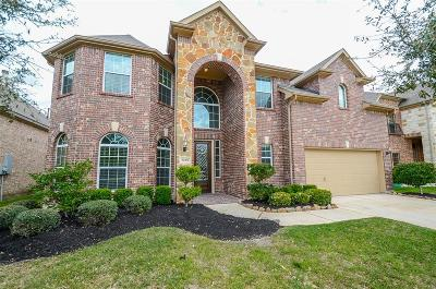Rosenberg Single Family Home For Sale: 8119 Paddle Rock Lane