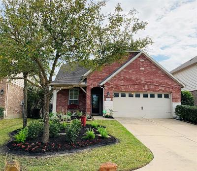 The Woodlands Single Family Home For Sale: 27 Tealight Place