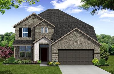 Tomball Single Family Home For Sale: 20407 Pony Field Court