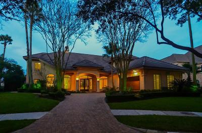Sugar Land Single Family Home For Sale: 3203 Riviera Drive