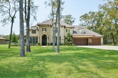 Richmond Single Family Home For Sale: 310 Royal Lakes Manor Boulevard