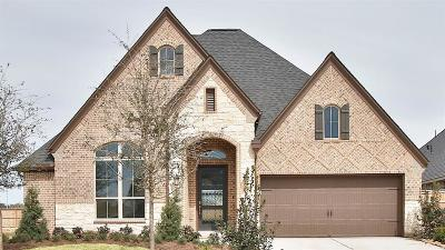 Fulshear Single Family Home For Sale: 3618 Lake Falls Drive
