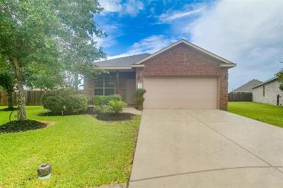 League City Single Family Home For Sale: 3228 Emma Lake Court