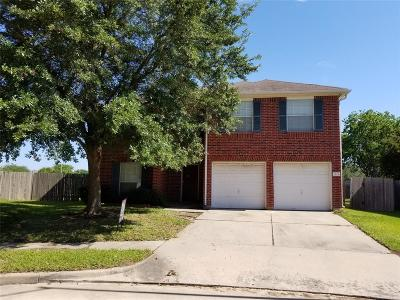 Katy Single Family Home For Sale: 3106 Oxbridge Court