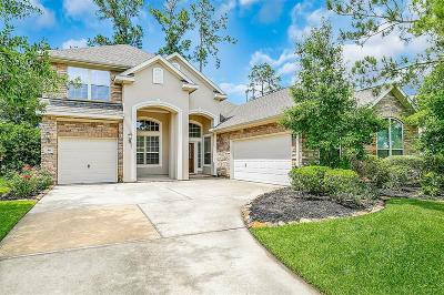 The Woodlands Single Family Home For Sale: 46 N Rocky Point Circle