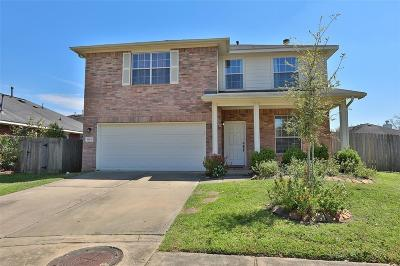 Sugar Land Single Family Home For Sale: 16335 Goanna Court