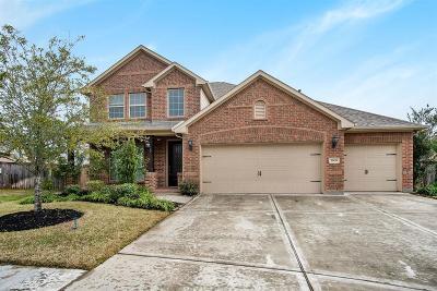 Manvel Single Family Home For Sale: 3909 Desert Zinnia Court