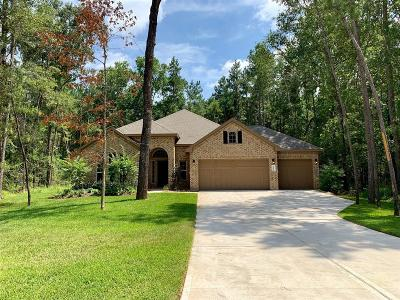 Conroe Single Family Home For Sale: 11033 Shadow View Drive