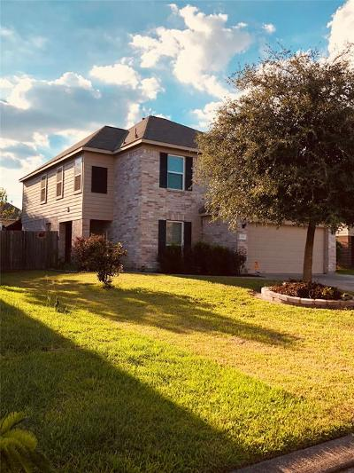Houston Single Family Home For Sale: 10611 Red Spruce Lane
