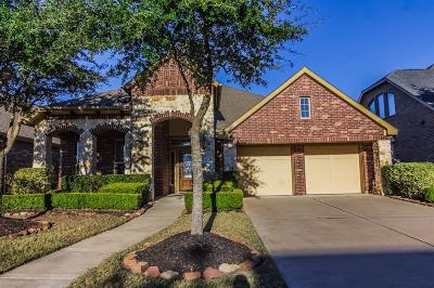 Katy Single Family Home For Sale: 9618 Sapphire Hill Lane