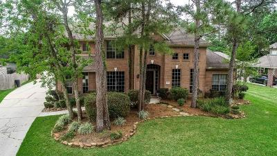 Kingwood Single Family Home For Sale: 6123 Hidden Lakes Drive